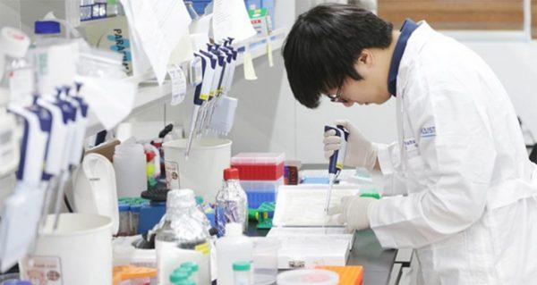 các trường có ngành dược